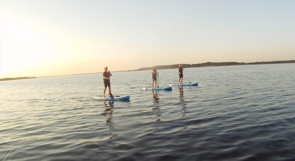 Paddleboard udlejning